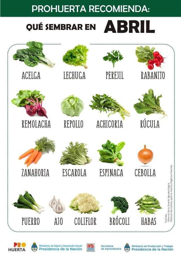 Que sembrar en Abril en Argentina